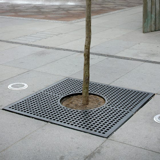 Riviere Square Hole Tree Grille